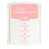 Blushing Bride Stampin' Pad - #131172